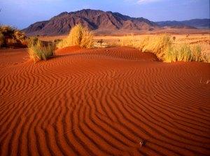 Desierto del Namib. visto aquí httpwww.rinconabstracto.com201104conozca-los-17-lugares-mas-alienigenas.html