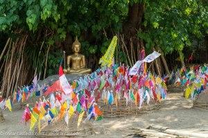 Decoración y ofrendas a Buda
