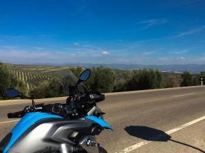 Parate y mira los campos de olivos